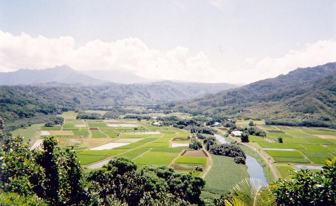 farmlandhawaii1.jpg